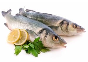 Shop for Kosher Freund's Fish